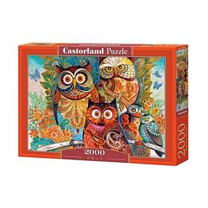 """Castorland (C-200535) - David Galchutt: """"Hiboux"""" - 2000 pièces"""