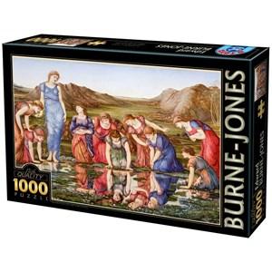 """D-Toys (72733-1) - Edward Burne-Jones: """"Le Miroir de Venus, 1875"""" - 1000 pièces"""