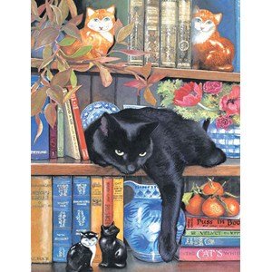 "SunsOut (CL59367) - Chrissie Snelling: ""On the Shelf"" - 1000 pièces"