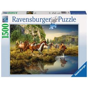 "Ravensburger (16304) - Roberta Wesley: ""Wild Horses"" - 1500 pièces"