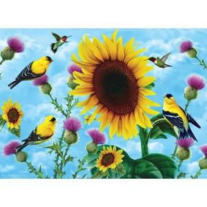 "SunsOut (49038) - Jerry Gadamus: ""Sunflowers and Songbirds"" - 500 pièces"