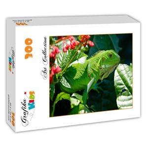 "Grafika Kids (00510) - ""Iguana"" - 300 pièces"