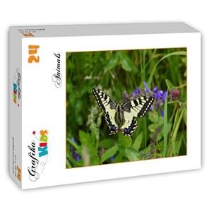 "Grafika Kids (01224) - ""Papillon"" - 24 pièces"