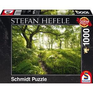 """Schmidt Spiele (59382) - Stefan Hefele: """"Le Chemin Enchantée"""" - 1000 pièces"""
