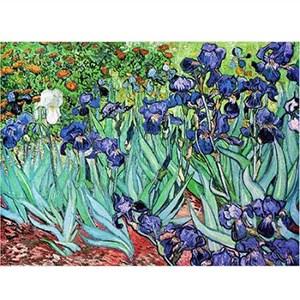 """D-Toys (66916-VG03) - Vincent van Gogh: """"Iris"""" - 1000 pièces"""