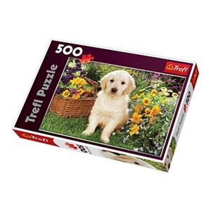 """Trefl (371604) - Greg Cuddiford: """"Labrador Puppy in the Garden"""" - 500 pièces"""
