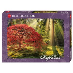 """Heye (29855) - Aaron Reed: """"Guiding Light"""" - 1000 pièces"""