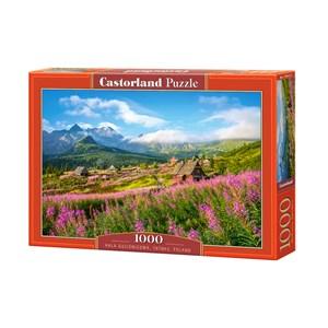 """Castorland (C-104512) - """"Hala Gasienicowa, Tatras, Poland"""" - 1000 pièces"""