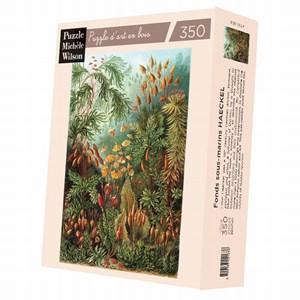 """Puzzle Michele Wilson (A736-350) - Ernst Haeckel: """"Ernst Haeckel"""" - 350 pièces"""