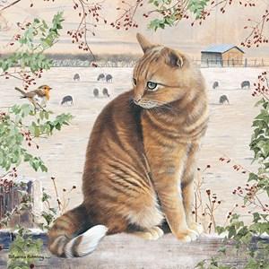 """Otter House Puzzle (74139) - """"Christmas Cat"""" - 1000 pièces"""