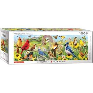 """Eurographics (6010-5338) - Greg Giordano: """"Garden Birds"""" - 1000 pièces"""