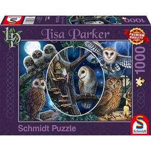 """Schmidt Spiele (59667) - Lisa Parker: """"Mysterious Owls"""" - 1000 pièces"""
