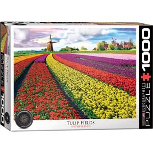 """Eurographics (6000-5326) - """"Champ de Tulipes aux Pays-Bas"""" - 1000 pièces"""