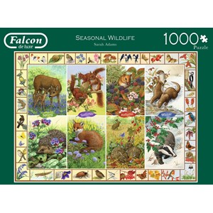 "Falcon (11200) - Sarah Adams: ""Seasonal Wildlife"" - 1000 pièces"