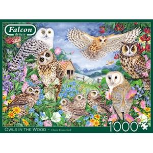 """Falcon (11286) - Claire Comerford: """"Chouettes dans Le Bois"""" - 1000 pièces"""