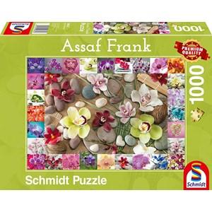 """Schmidt Spiele (59632) - Assaf Frank: """"Orchids"""" - 1000 pièces"""