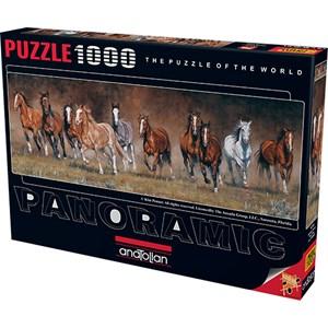 "Anatolian (1010) - Kim Penner: ""Horses"" - 1000 pièces"