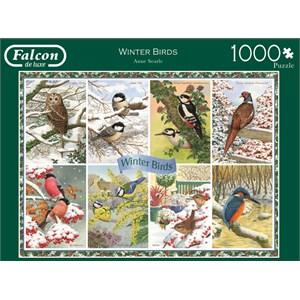 "Falcon (11234) - Anne Searle: ""Winter Birds"" - 1000 pièces"