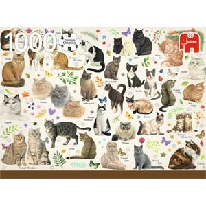 """Jumbo (18595) - Francien van Westering: """"Cats Poster"""" - 1000 pièces"""