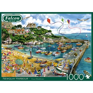 "Falcon (11290) - Fiona Osbaldstone: ""Newquay Harbour"" - 1000 pièces"