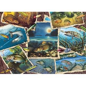 "Cobble Hill (80209) - Jon Q. Wright: ""Fish Pics"" - 1000 pièces"