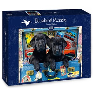 "Bluebird Puzzle (70328) - Greg Cuddiford: ""Travel Labs"" - 1000 pièces"