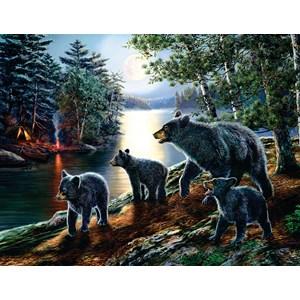 """SunsOut (28368) - James Meger: """"Bear Moon"""" - 1000 pièces"""