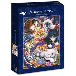 """Bluebird Puzzle (70087) - Jenny Newland: """"Kittens In Closet"""" - 1000 pièces"""