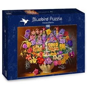 """Bluebird Puzzle (70096) - D.L. Rusty Rust: """"House Plants"""" - 1000 pièces"""