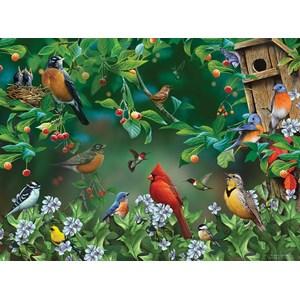 """SunsOut (49054) - Jerry Gadamus: """"Bird Festival"""" - 1000 pièces"""