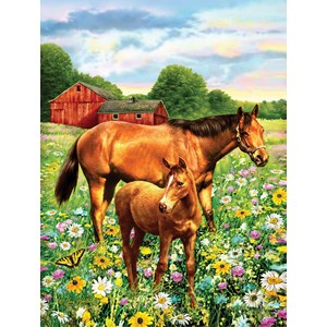 """SunsOut (37174) - Greg Giordano: """"Mare and Foal"""" - 500 pièces"""