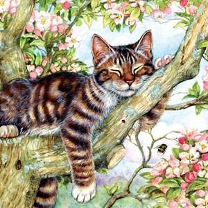 """SunsOut (50423) - Debbie Cook: """"Sleepy Cat"""" - 500 pièces"""