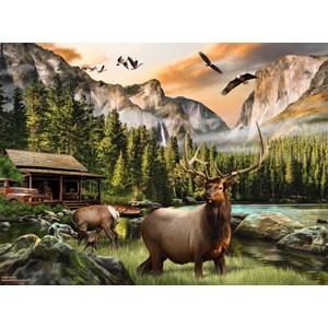 "SunsOut (49004) - Nigel Hemming: ""Elk Country"" - 1000 pièces"