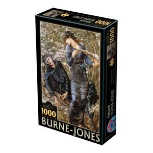 """D-Toys (75024) - Edward Burne-Jones: """"La Séduction de Merlin, 1872-1877"""" - 1000 pièces"""