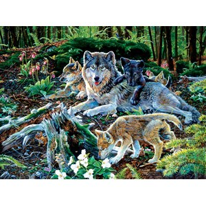 """SunsOut (60506) - Jan Martin McGuire: """"Forest Wolf Family"""" - 500 pièces"""
