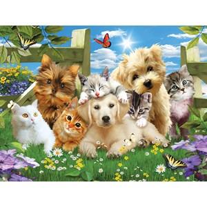 "SunsOut (54923) - Jonathan Robinson: ""Pups n Kittens"" - 300 pièces"