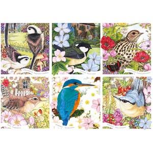 """Otter House Puzzle (75079) - """"RSPB, Garden Birds"""" - 1000 pièces"""