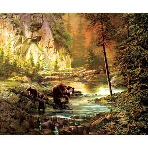 """SunsOut (51050) - Roberta Wesley: """"Bearly Daylight"""" - 1000 pièces"""