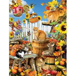 """SunsOut (35143) - Lori Schory: """"XXL Pieces - Lori Schory - Harvest Kittens"""" - 300 pièces"""