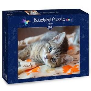 "Bluebird Puzzle (70368) - ""Kitten"" - 260 pièces"