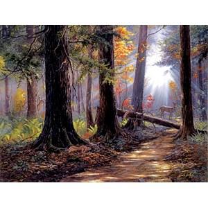 """SunsOut (40610) - Jack Paluh: """"Peaceful Path"""" - 500 pièces"""