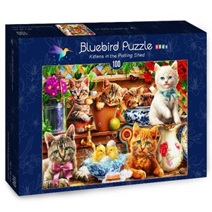 """Bluebird Puzzle (70400) - Adrian Chesterman: """"Kittens in the Potting Shed"""" - 100 pièces"""