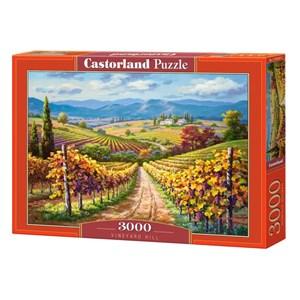 "Castorland (300587) - ""Vineyard hill"" - 3000 pièces"