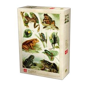 """Deico (75703) - """"Frogs"""" - 1000 pièces"""