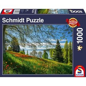 "Schmidt Spiele (58967) - ""Tulips Field, Mainau Island"" - 1000 pièces"