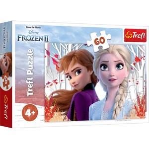 "Trefl (17333) - ""Frozen II"" - 60 pièces"