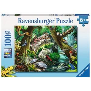 """Ravensburger (10703) - """"Creepy Crawlies"""" - 100 pièces"""