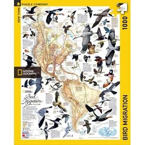 """New York Puzzle Co (NPZNG1715) - """"Bird Migration"""" - 1000 pièces"""