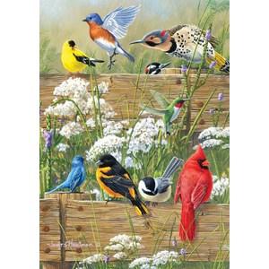 "Buffalo Games (2496) - James Hautman: ""Songbird Menagerie"" - 300 pièces"