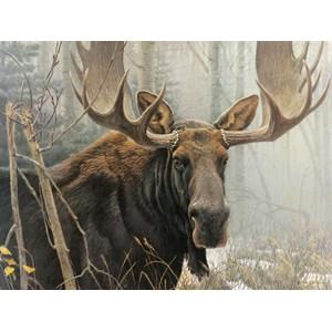 """Cobble Hill (52080) - Robert Bateman: """"Bull Moose"""" - 500 pièces"""